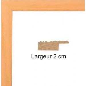 Plat Saumon 50 X 75 Cm